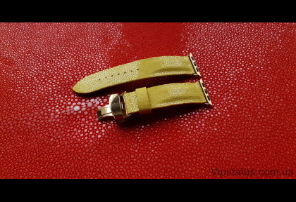 Luxury Stingray Leather Strap for Franck Muller watches image